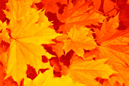 Fall is coming: Time to prep your heating system